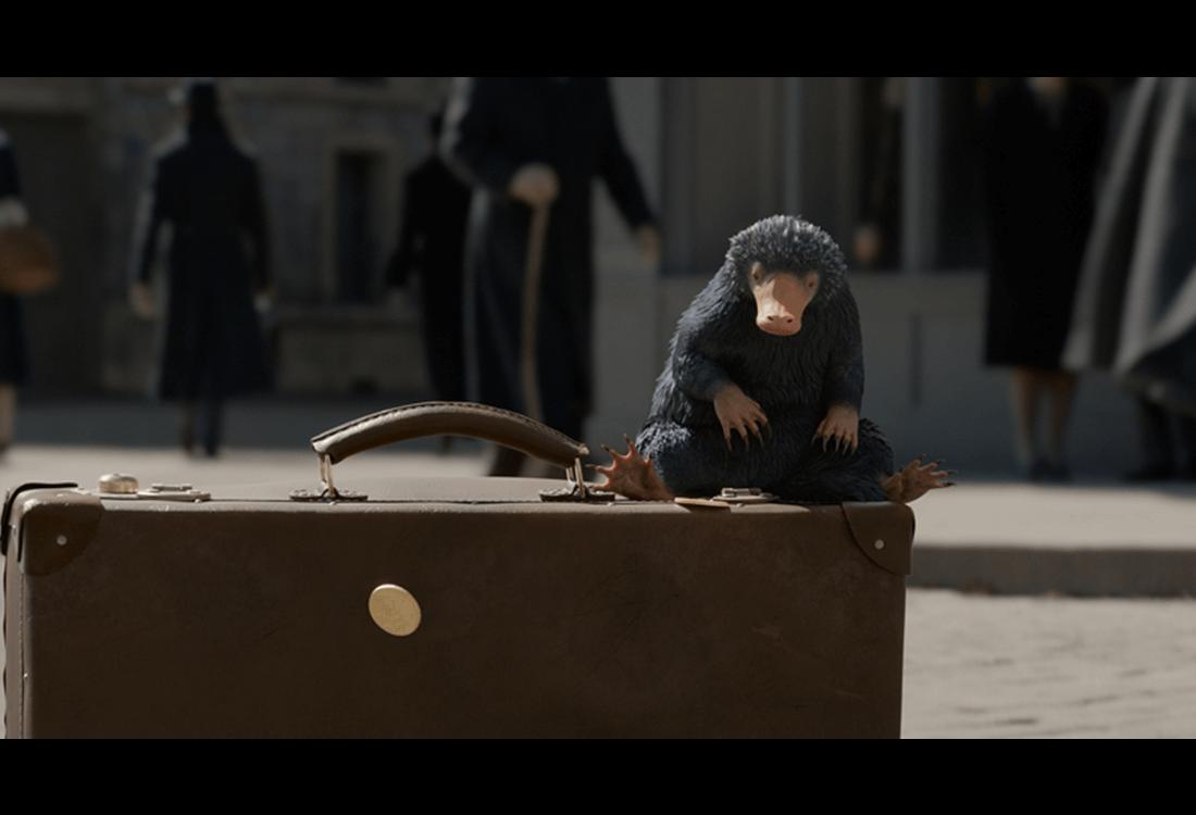 神奇动物:格林德沃之罪